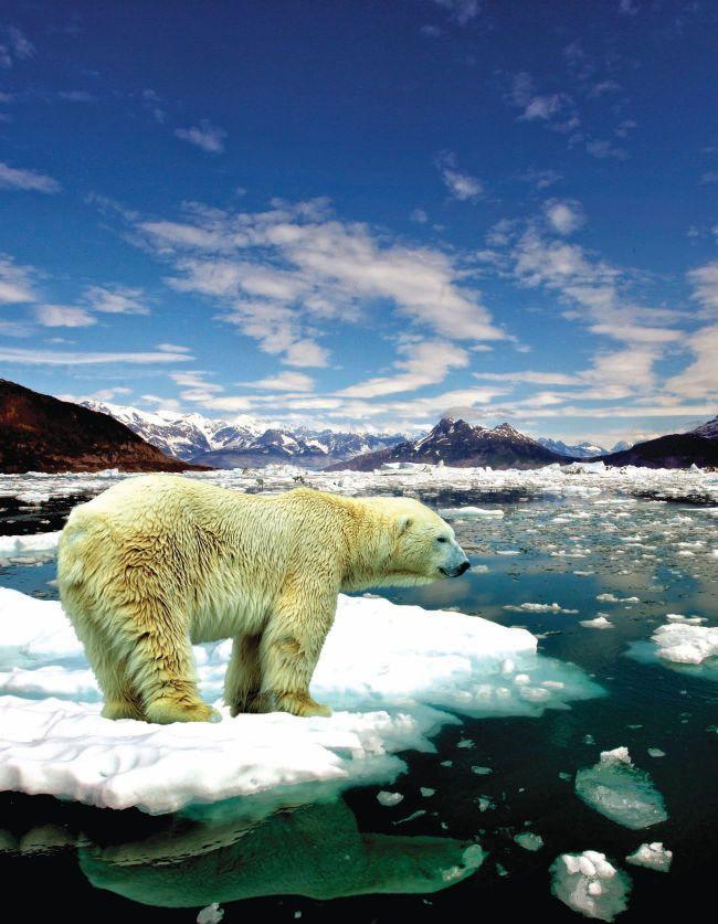 Ytterligere 200 vitenskapsfolk har underskrevet oppropet: Det er ingen klimakrise!