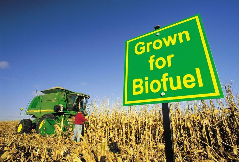 Innblanding av biodiesel vil drive drivstoffprisen i været.