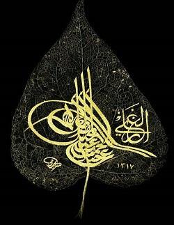 Bir Dehanın İzleri - II.Abdülhamid Han, Talha Uğurluel