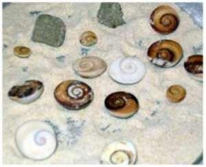Yılancık Taşları