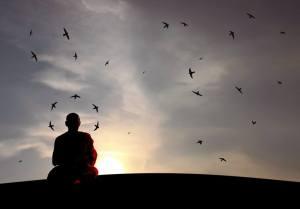 Adhimutta ve Haydutlar