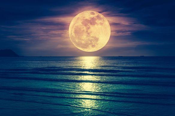 """2 eylül balık dolunayı: """"bilinen bilinmeyenler"""" ve """"bilinmeyen bilinmeyenler"""""""