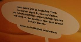 Erklärungsschild zur Bionik des Sandfisches (Foto: Rüdiger Hengl)