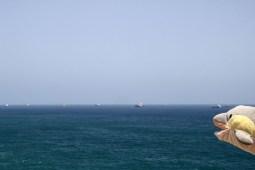 FINN wundert sich über die vielen Tanker (Foto: Rüdiger Hengl)