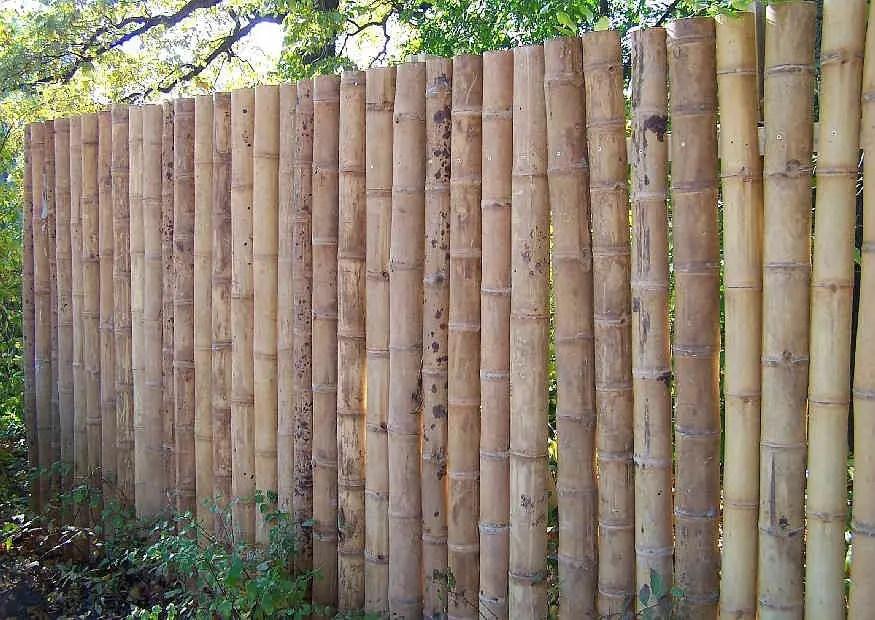 Sichtschutz Aus Bambusrohr Selber Bauen Halbschalen