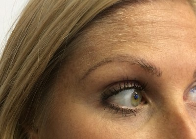 Permanent Eyebrows #030