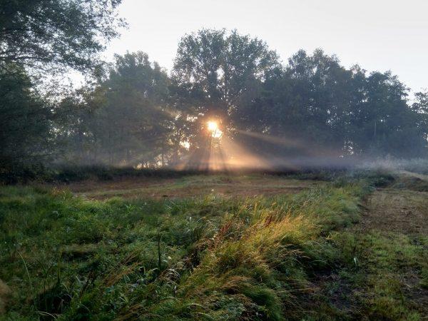 zonsopgang met nevel