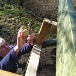 onderzoeker Will fotografeert een boomhommel