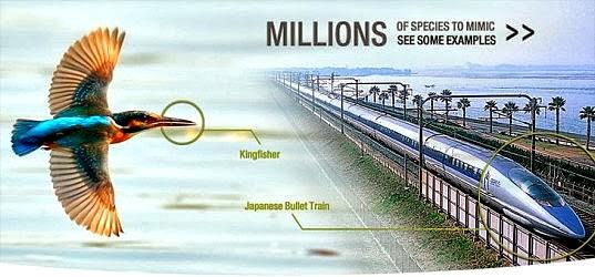 ijsvogelontwerp bullet-train