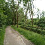 zuidzijde voorkant natuurtuin