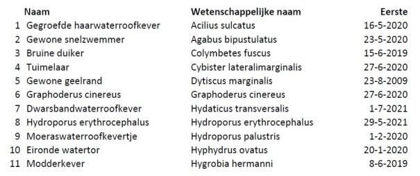 Waterroofkevers Natuurtuin