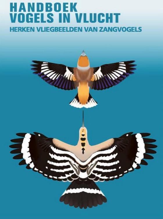 Handboek vogels in vlucht - Auteur(s):Tomasz Cofta