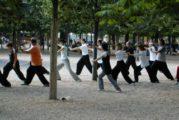Tai Chi voor beginners in de Hilt