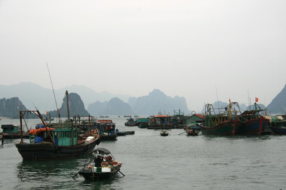 Cai Rong