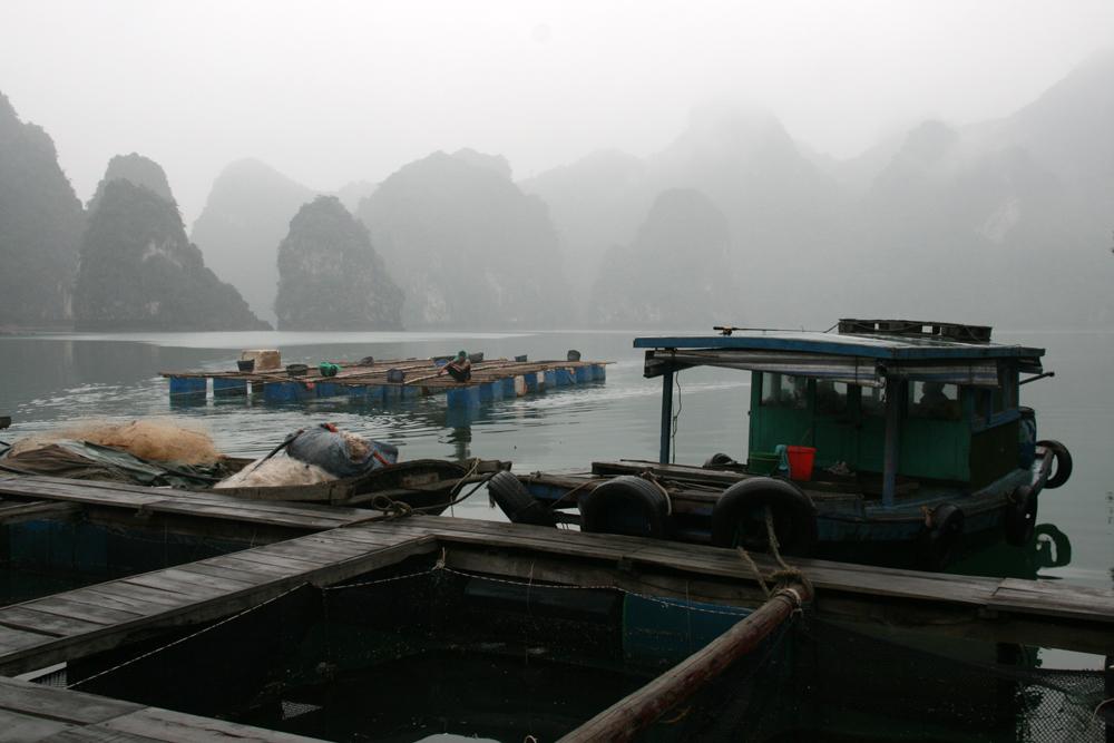 Maisons flottante et ferme à poissons dans la baie d'Halong