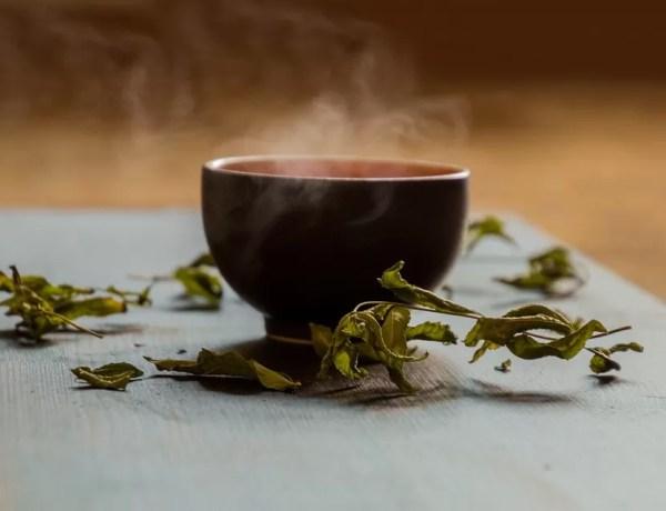 Tè verde Sencha con ciliegie Dersut