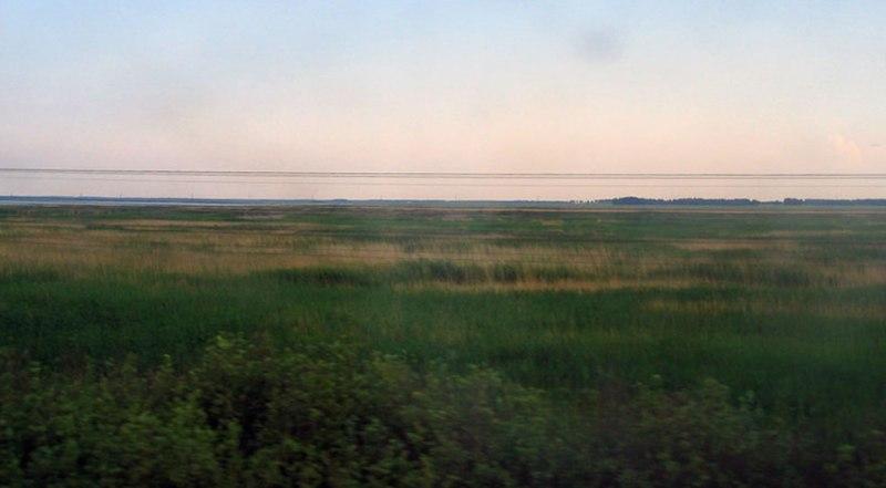 landschap waar de Russische Dwerghamster leeft en hamster-graafgedrag