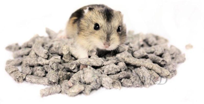 Back 2 nature bodembedekking voor hamsters