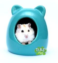 Critter bath met Russische Dwerghamster hamsterhuisje