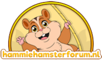 hamsterforum