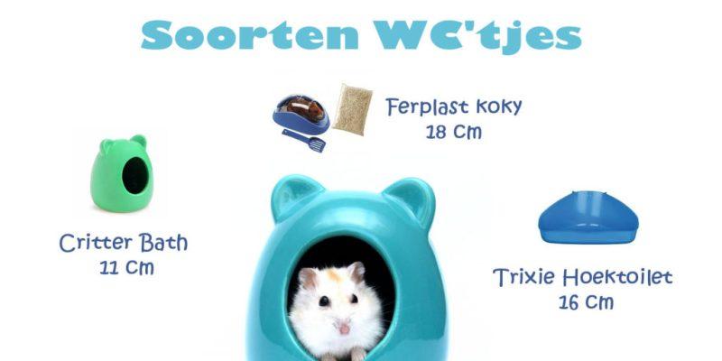 hamster toilet
