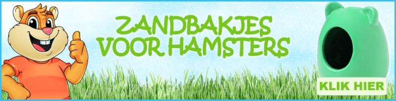 hamster zandbak kopen