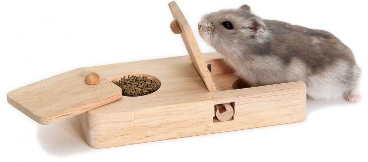 intelligentie speeltjes voor hamsters en dwerghamsters