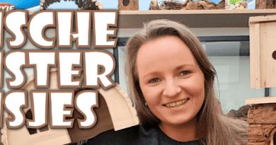 blog syrische hamster huisjes