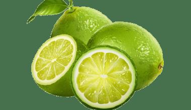 preview jeruk lemon