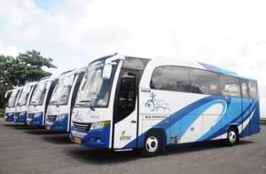 Transport Service Sewa Mobil di Bali Bus