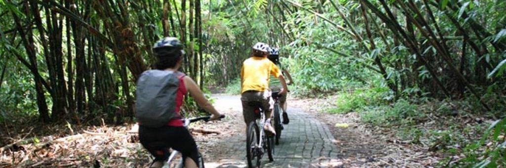 Wisata Adventure Bali di Desa Penglipuran Header Image