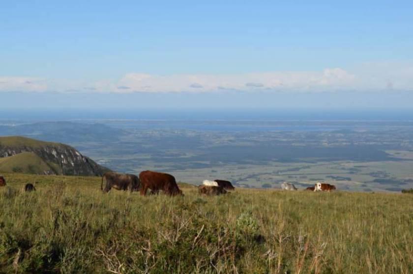 desbravando-horizontes-cambara-do-sul-serra-geral-canyon-fortaleza0178