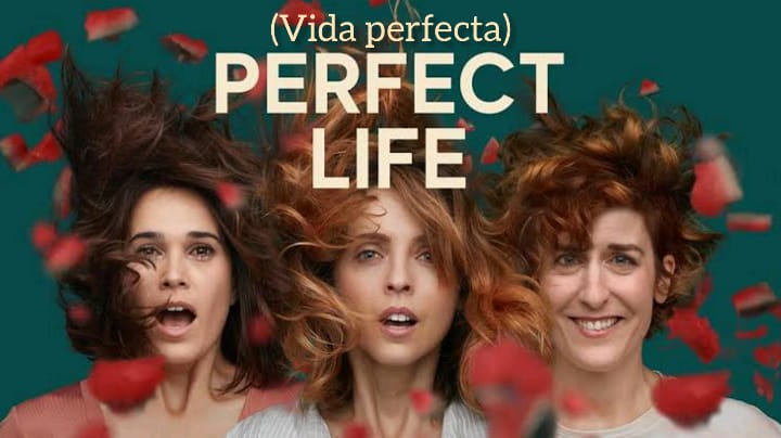 Perfect Life (Temporada 1) HD 720p (Mega)