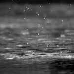 Avril, la pluie et quelques livres