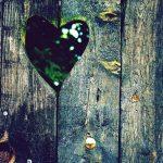 Réflexion légère sur les affaires de coeur…