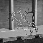 Réflexion légère sur la cohabitation