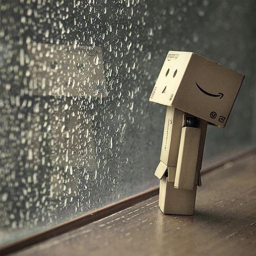 danbo-rain
