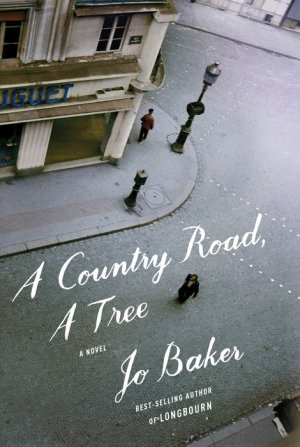 jo-baker-a-country-road-a-tree