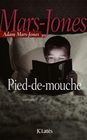 pied-de-mouche-dadam-mars-jones