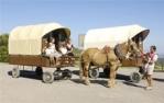 Carruatge tirat per cavalls a Sant Mateu de Bages