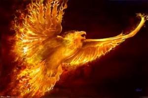phoenix-forma-esenta
