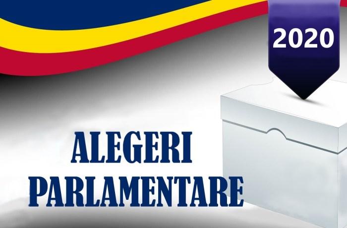 Alegeri parlamentare 2020. Vezi aici cum au votat mehedințenii și care vor fi parlamentarii de Mehedinți