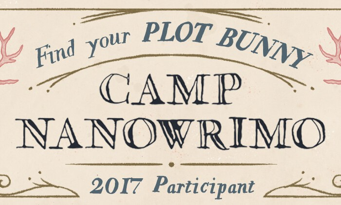 Fin du Camp Nano – bilan