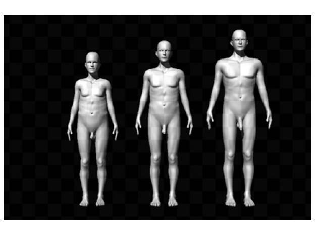Siluetas masculinas desnudas