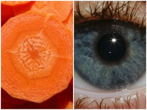 ojo-naranja