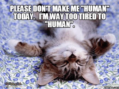 Please don't make me human today