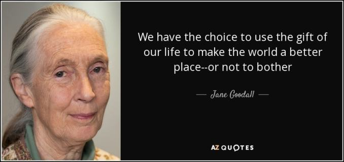"""Picture of Jane Goodall with the quote """"We have the choice to use the gift of our life to make the world a better place - or not to bother."""""""