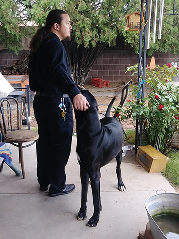 A man with long hair caught up in a ponytail, dressed in black, standing next to a mostly black Great Dane, scratching behind the dog's ears while gazing off into the distance with a sense of tired sadness.