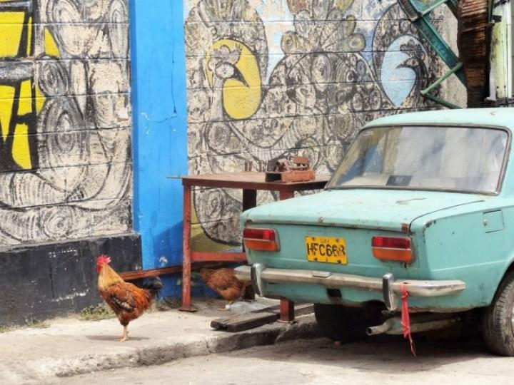Le Callejon de Hamel, La Havane - Cuba
