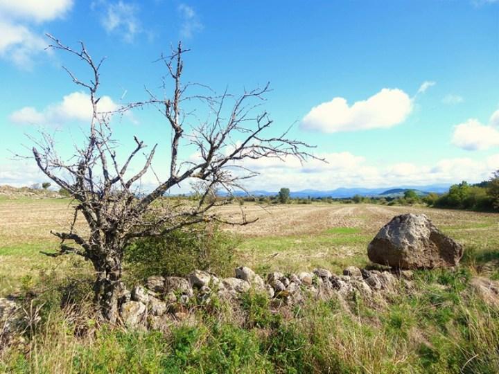 Murets de pierres